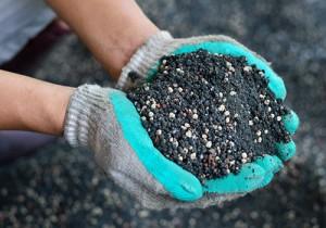 Hands holding pile of fertilizer