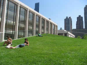 Lawn-In-The-City