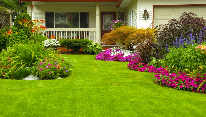 Your-Guide-to-Summer-Lawn-Maintenance
