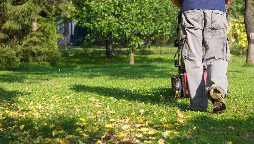 How You Can Achieve a Less-Maintenance Lawn
