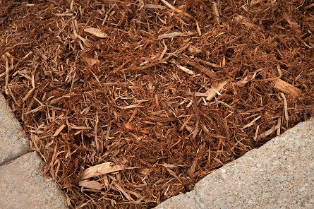 Natural-Mulch-image61